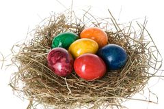 Easter eggs in a nest Stock Photography