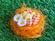 Easter eggs in a nest Royalty Free Stock Photos