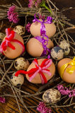 Easter eggs nest stock photography