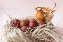 Easter eggs, nest, bird, painted, brown. Easter eggs, nest, bird, painted brown, Easter eggs, nest, bird, painted brown stock image