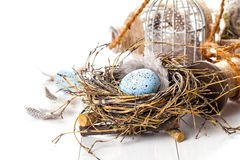 Easter eggs nest with birdcage Stock Photography