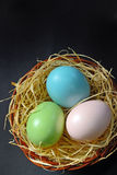 Easter eggs in the nest stock image