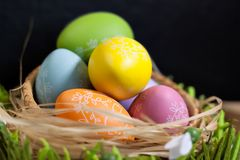 Easter eggs in nest black. Celeblation easter colored easter eggs in color nest black royalty free stock photo
