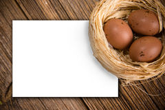 Easter eggs in nest with card Royalty Free Stock Images