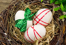 Easter eggs in nest. Royalty Free Stock Photography