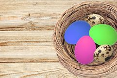 Easter eggs in nest on color wooden Stock Images