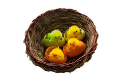 Easter Eggs In  Nest Stock Image