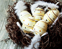 Easter Eggs in a Nest with Delicate Feathers Stock Photo