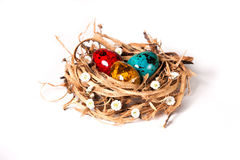 Easter eggs in a nest with florets. Colored Easter eggs in a nest with florets stock photos