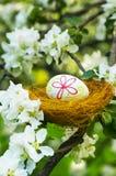 Easter eggs in a nest in flowering garden Royalty Free Stock Image