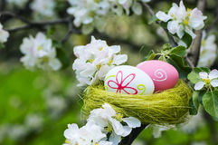 Easter eggs in a nest in flowering garden Stock Photography