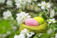 Easter eggs in a nest in flowering garden Stock Image