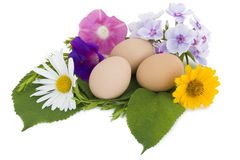Easter eggs in a nest from flowers Royalty Free Stock Photo
