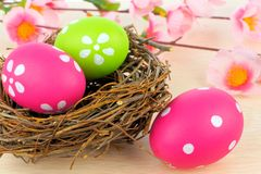 Easter eggs in nest with flowers Royalty Free Stock Photo