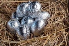 Easter eggs in nest.jpg Royalty Free Stock Images