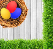 Easter eggs in nest over white wooden background Royalty Free Stock Photography