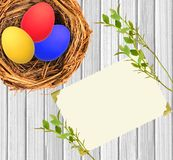 Easter eggs in nest over white wooden and blank card Stock Photos