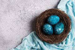 Easter eggs in nest painted by hand in blue color on light background royalty free stock photo