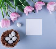 Easter eggs in nest, pink tulips flowers and sheet of paper over light blue background. Greeting card for Happy Easter. Flat lay. Top view stock photos