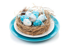 Easter eggs nest on plate Royalty Free Stock Images