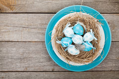 Easter eggs nest on plate Stock Photography