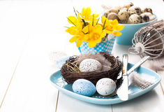 Easter eggs nest on plate with yellow Spring Crocus. Stock Photo