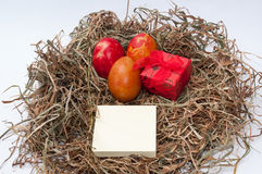Easter eggs in the nest and red box and empty message paper Royalty Free Stock Image
