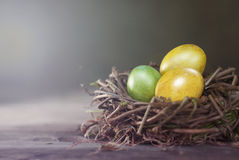 Easter eggs in the nest on rustic wooden background Royalty Free Stock Images