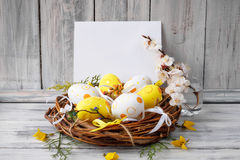 Easter eggs in nest on rustic wooden planks. With flowers Stock Images