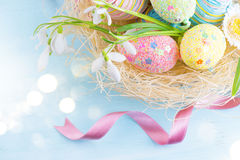Easter eggs in the nest with spring flowers Royalty Free Stock Photography
