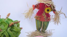 Easter eggs in a nest, a straw man stock video footage