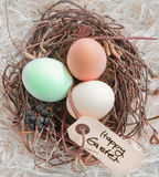 Easter Eggs In A Nest With Tag. Three boiled dyed Easter Eggs in a nest with a Happy Easter tag Stock Photography