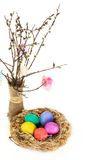 Easter eggs in the nest and tulip flowers Royalty Free Stock Image