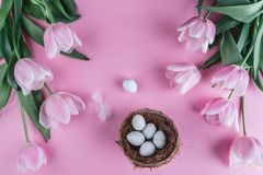 Easter eggs in nest and tulip flowers on spring background. Royalty Free Stock Photography