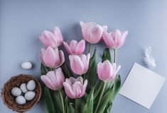 Easter eggs in nest and tulip flowers on spring background. Top view with copy space. Happy Easter card.  stock photo