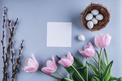 Easter eggs in nest and tulip flowers on spring background. Top view with copy space. Happy Easter card.  stock images