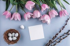 Easter eggs in nest and tulip flowers on spring background. Top view with copy space. Happy Easter card.  stock image