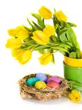 Easter eggs in the nest and tulip flowers Stock Photos