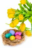 Easter eggs in the nest and tulip flowers Royalty Free Stock Images