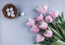 Easter eggs in nest and tulips flowers on spring background. Top view with copy space. Happy Easter card. Stock Photography