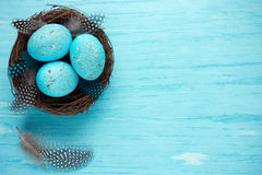 Easter eggs in nest. Turquoise Easter background Stock Photography