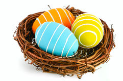 Easter eggs in a nest on a white background. Royalty Free Stock Photography