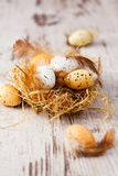Easter eggs in nest on wood background Stock Image