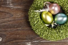 Easter eggs in nest. On wooden background stock images