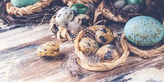 Easter eggs in nests. Easter banner. Rustic surface. Selective focus stock images