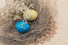 Easter eggs and nests. On wooden surface Royalty Free Stock Photos