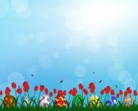 Free Easter Eggs On Springtime Meadow Stock Photo - 67322580