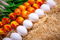 Easter eggs and orange tulips on the straw Royalty Free Stock Photo