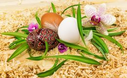 Easter eggs with orchid. Easter eggs in the grass with flowers Royalty Free Stock Photo