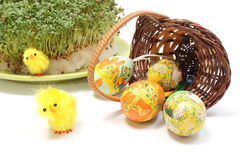 Easter eggs in overturned wicker basket and green watercress Royalty Free Stock Image